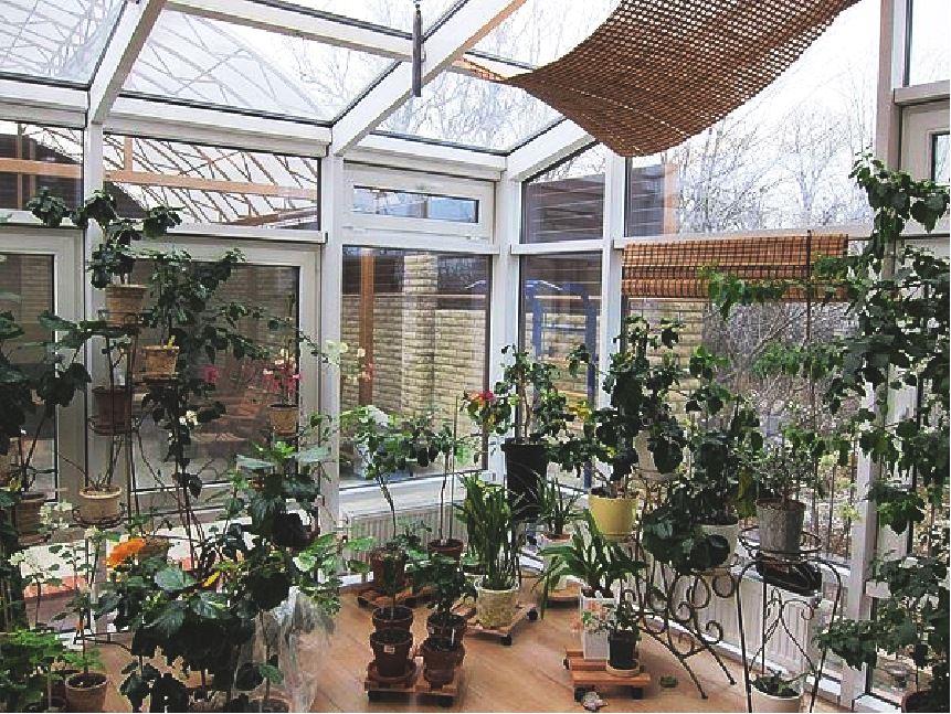 Дома с зимним садом фото