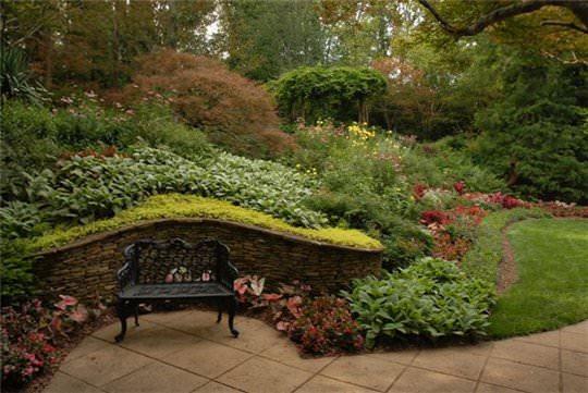 Фото визуализация сада в пейзажном стиле
