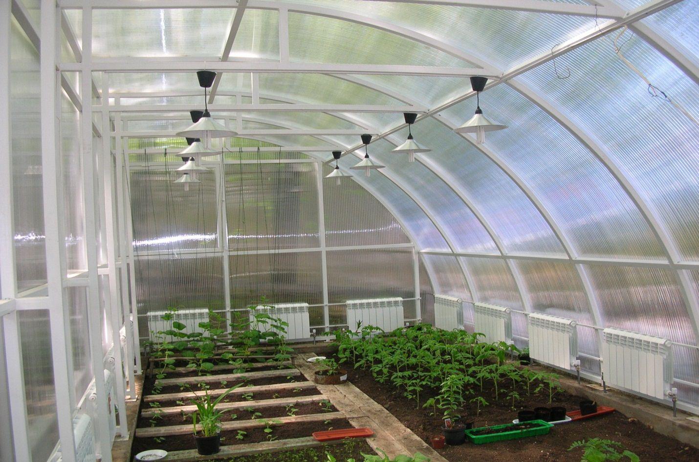 Как сделать зимний сад своими руками?