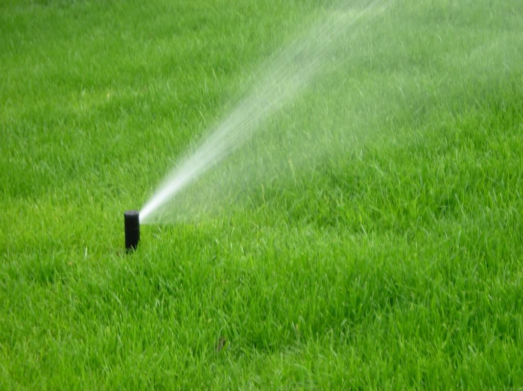 Удобрения для газона осенью