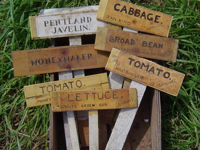 Таблички для растений в детском саду