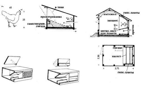 Схема строения зимнего курятника