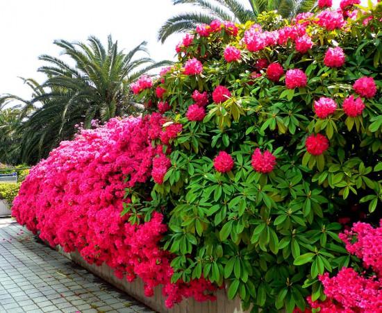Уличный декор для цветов
