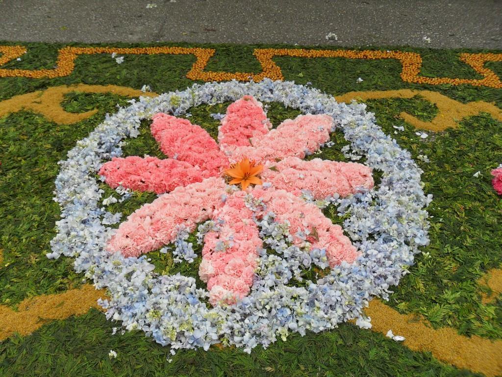 Схема цветка на клумбе фото 970