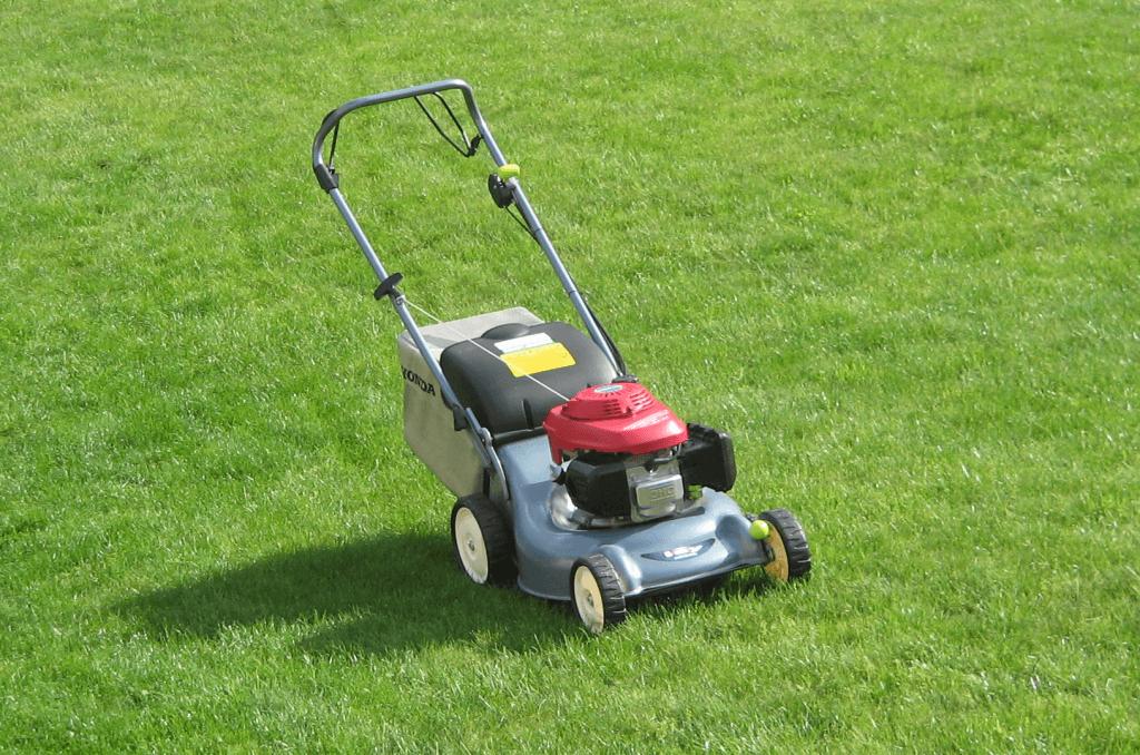 Стричь газон фото