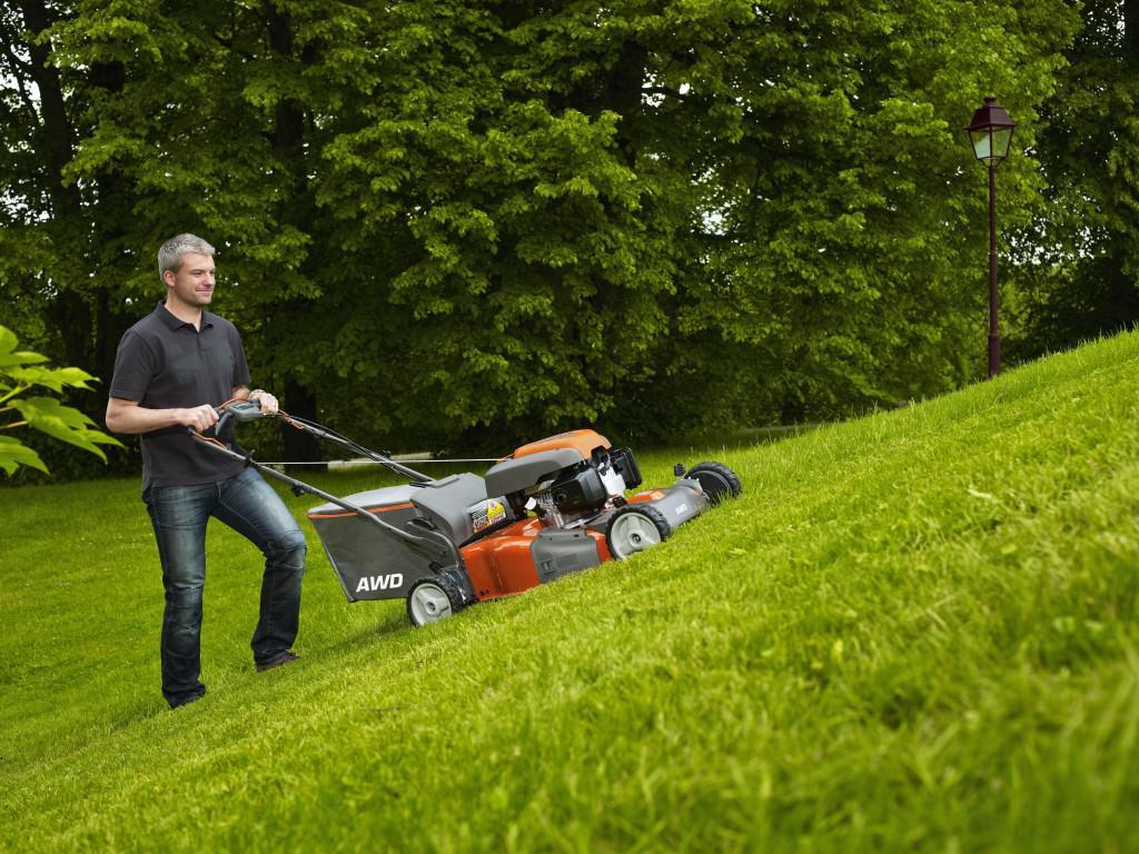 Как називается удобрение для газона?