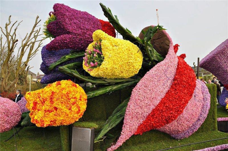 Клумбы для Тюльпанов своими руками фото