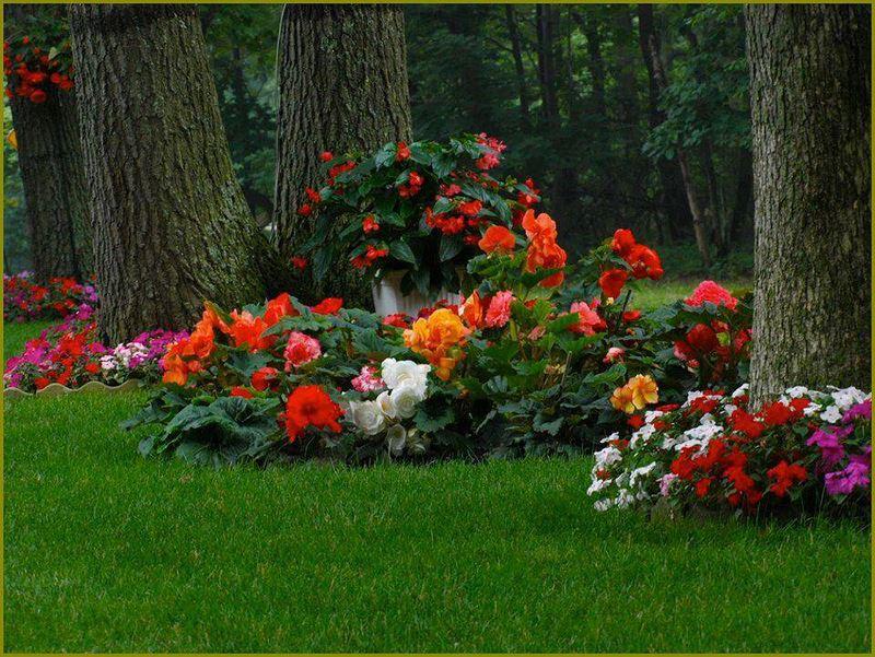 Оформление цветника перед домом своими руками