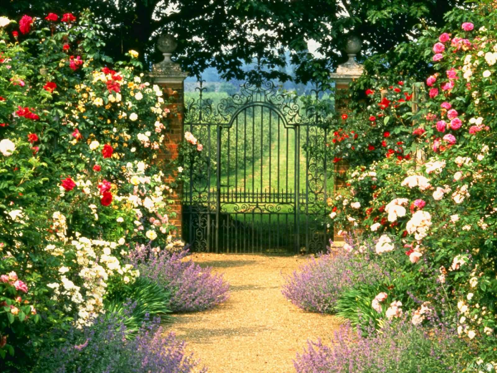 Вороты фото цветами ворота с калиткой металлические распашные цена