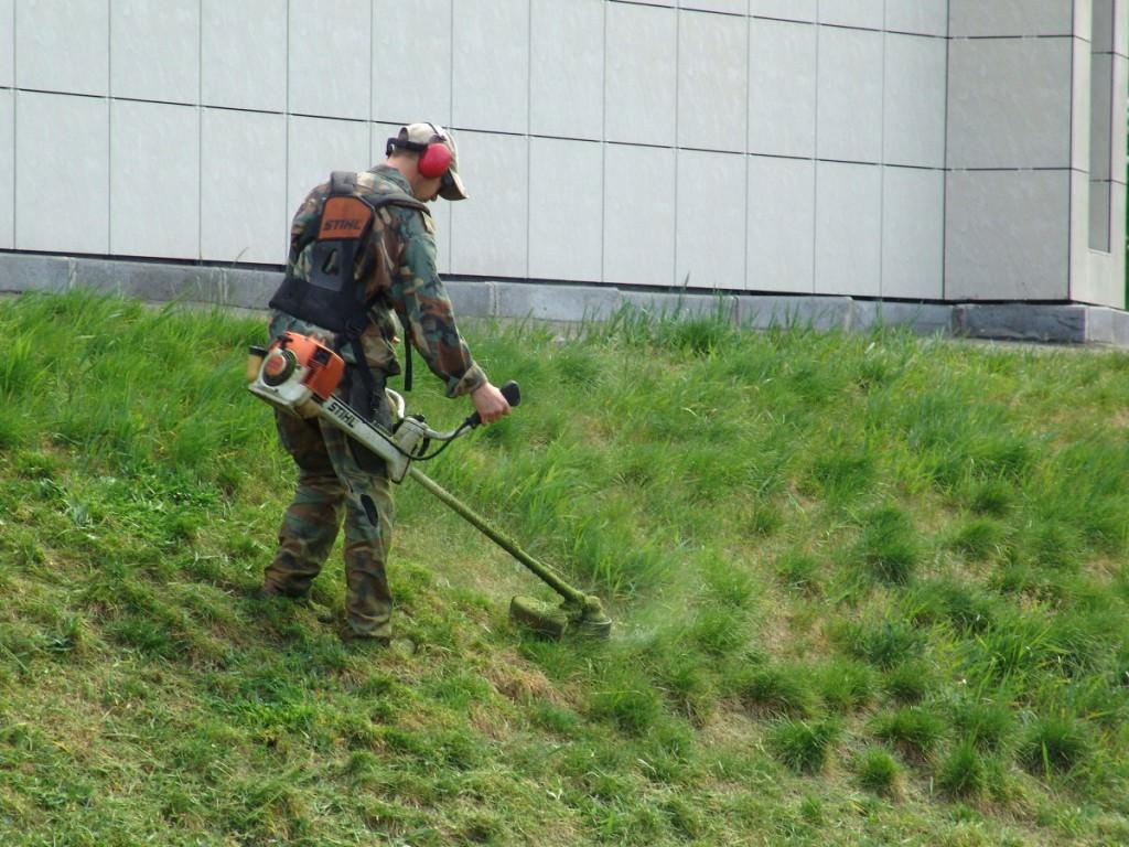 Как уход газонам осенью и зима?
