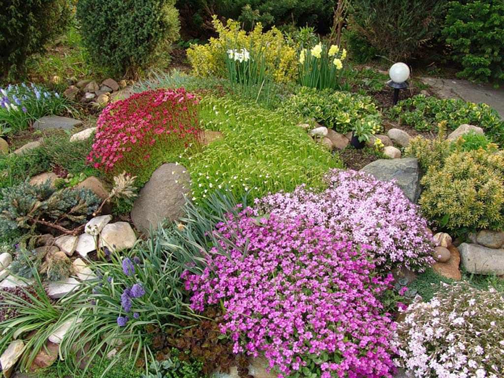 Альпинарий с цветами