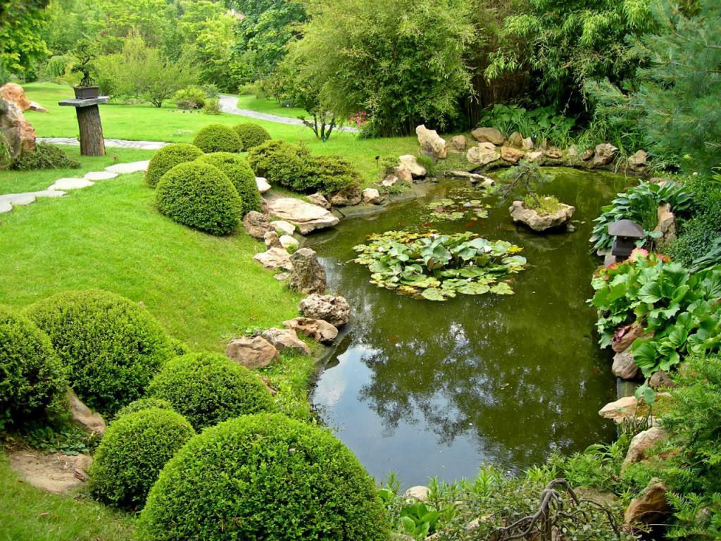 Варианты оформления садового пруда с рыбами