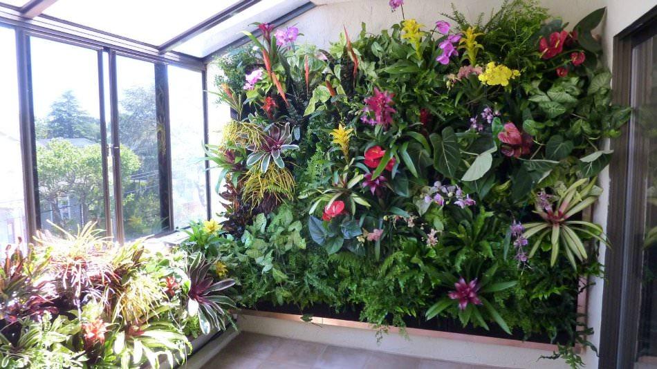 Стены из растений своими руками