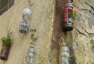 Plastic bottles as flower pots