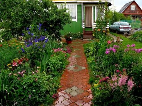 Садовые дорожки возле дома
