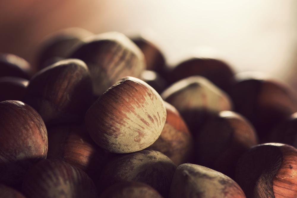 Чем прызгать орех фундук