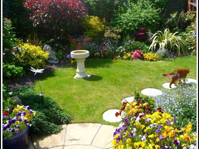 Тюльпаны в саду ландшафтный дизайн фото