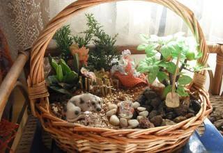 Сады в миниатюре своими руками