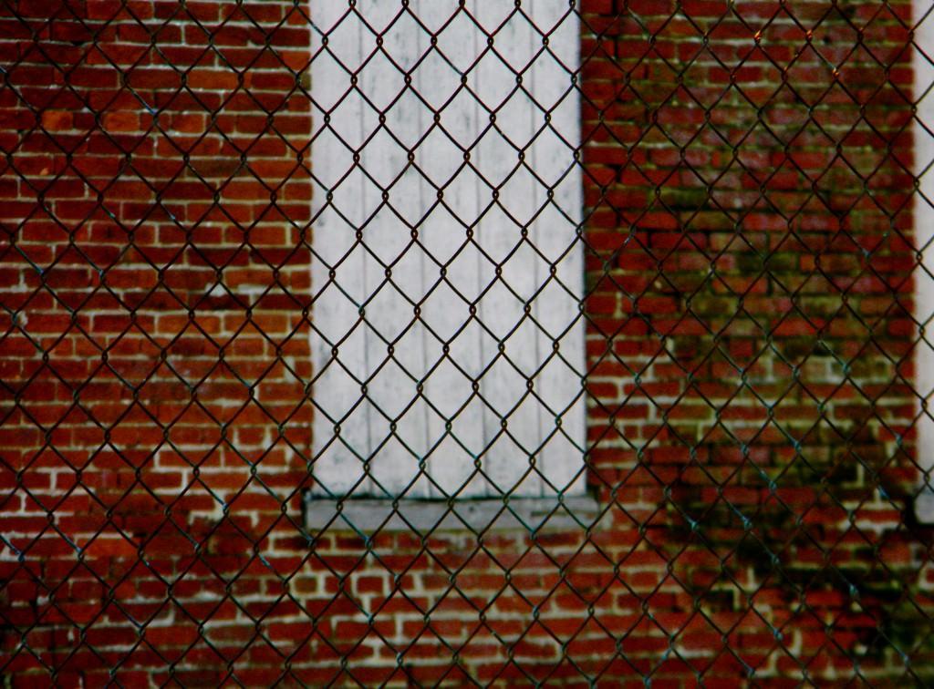 Заборы фото из профнастила и кирпича