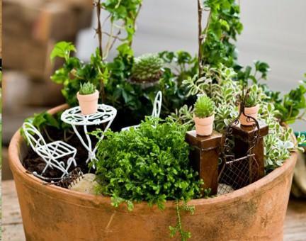 Миниатюрный сад своими руками