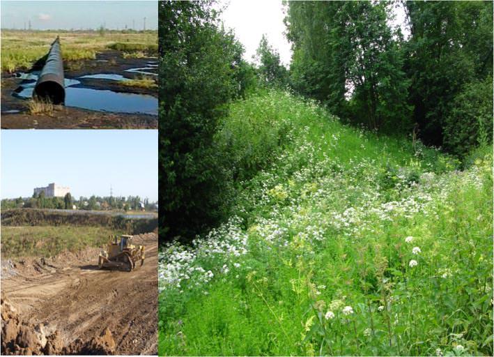 Типы рекультивации земель