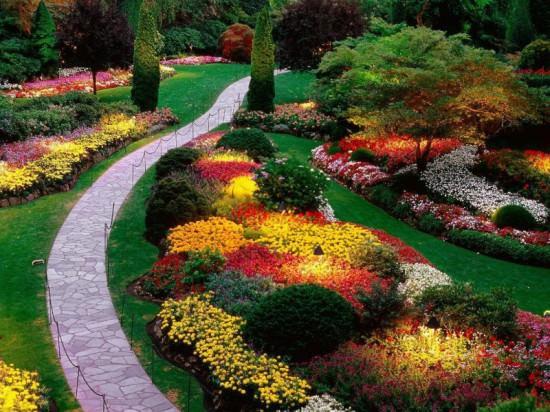 Планировка цветника своими руками