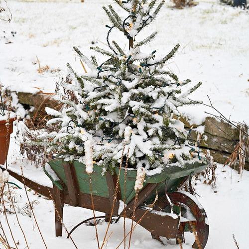 Новогодний декор для сада