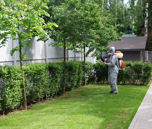 Удобный опрыскиватель для сада