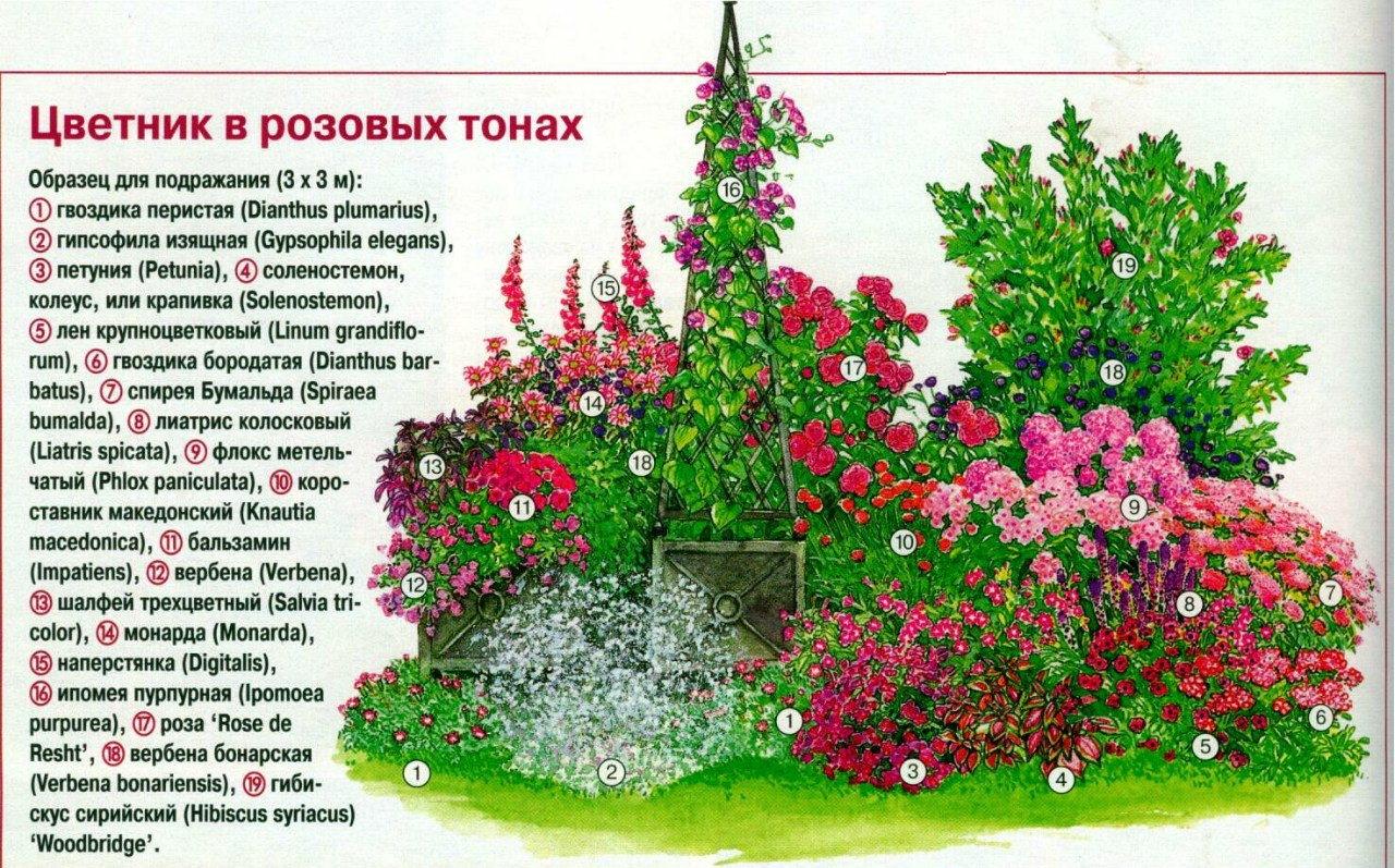 Схема розария