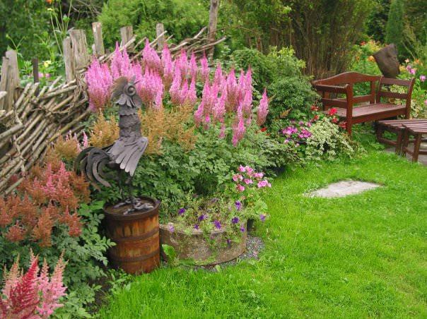 Рододендроны в деревенском стиле ландшафта фото