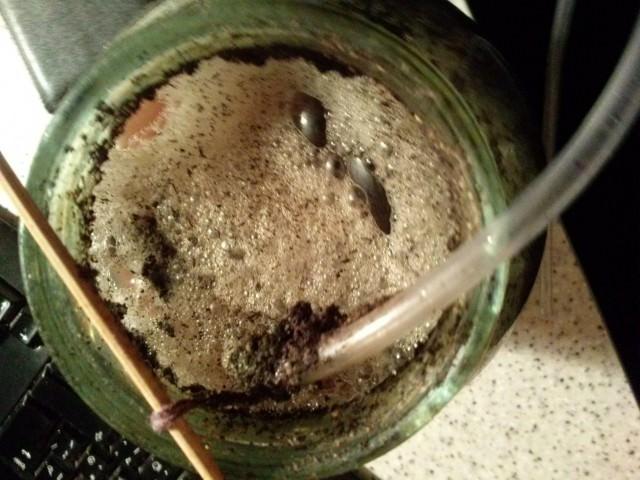 Аэрированный компосный чай