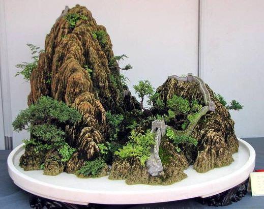 Китай частный сад видио растения