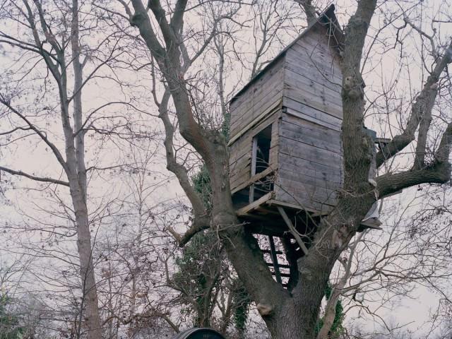 Техношогия постройки дома на дереве