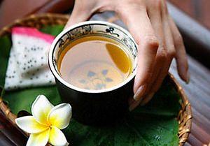Курильский чай посадка и уход фото