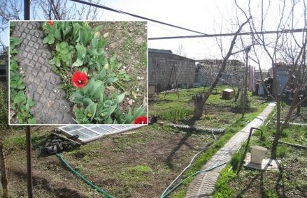 Садовые дорожки из покрышек своими руками