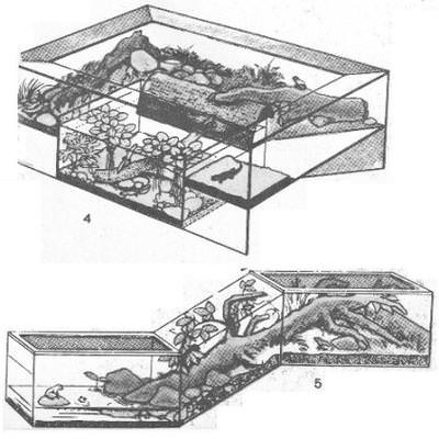 akvarium-terrarium_5