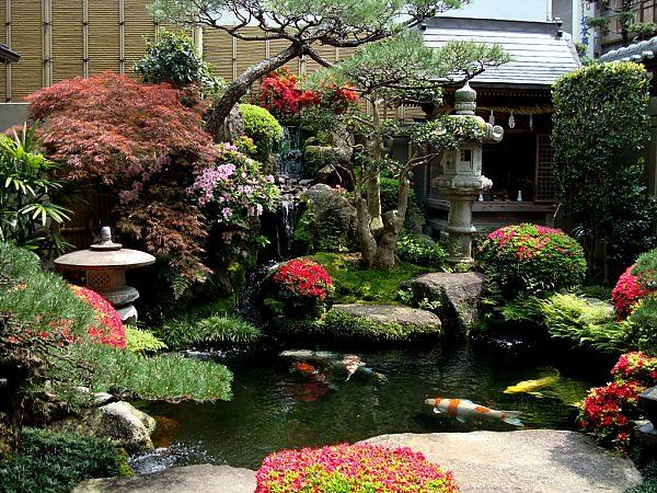 Китайский сад в ландшафтном дизайне