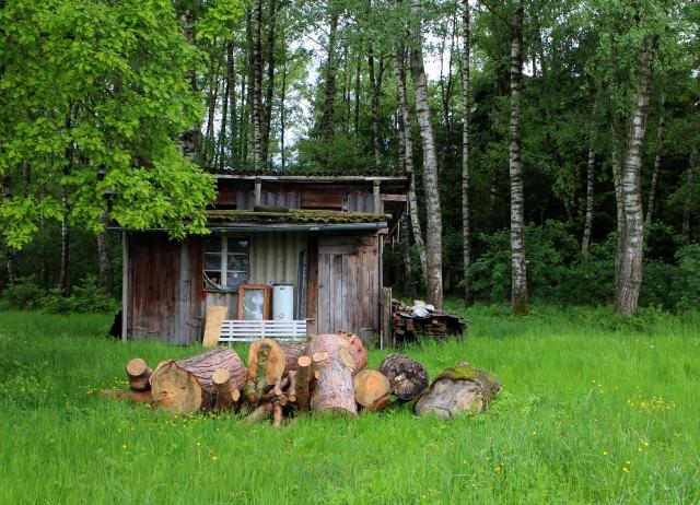 Как сделать домик в лесу?