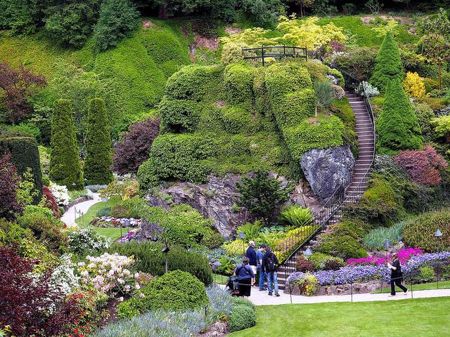 Канадские сады цветов