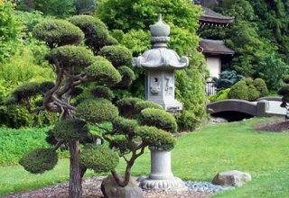 Японский сад - элемент культуры Востока