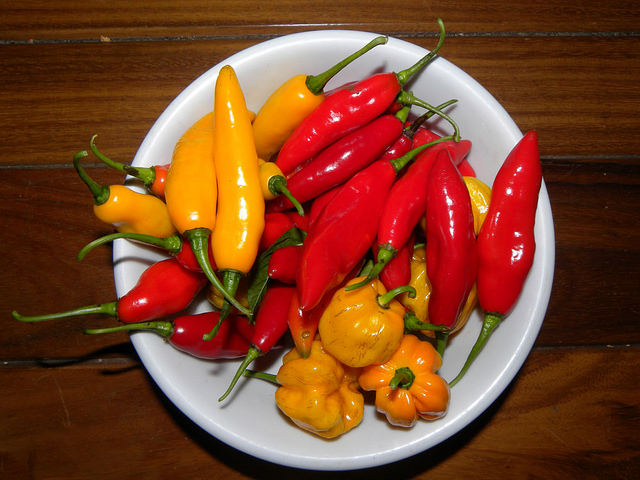 Перец Чили фото