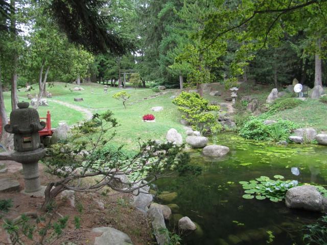 Роем пруд на болотистой местности