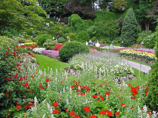 Сады Будчеров посмотреть фото