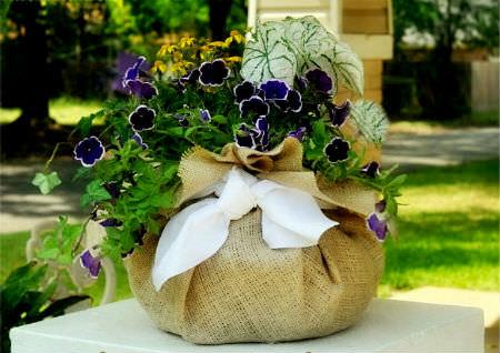 Цветы в оформлении интерьера