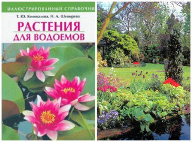 Ландшафтный дизайн книги скачать бесплатно