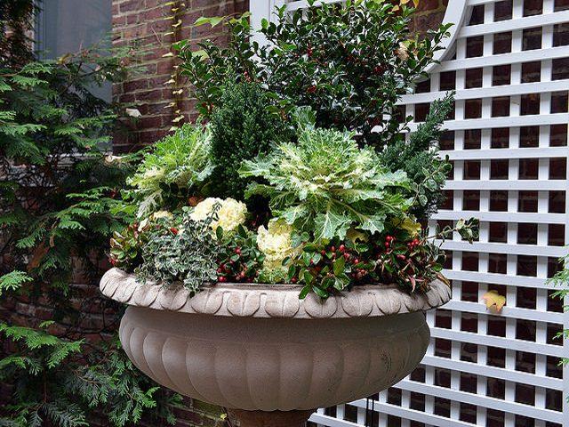 Как украсить двор своими руками?