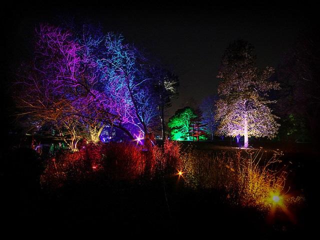Парковое освещение в саду