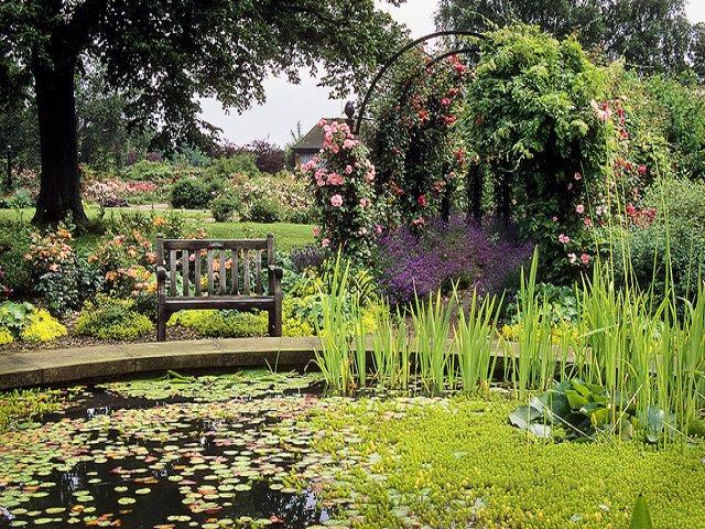 Как сделать двор красивым?