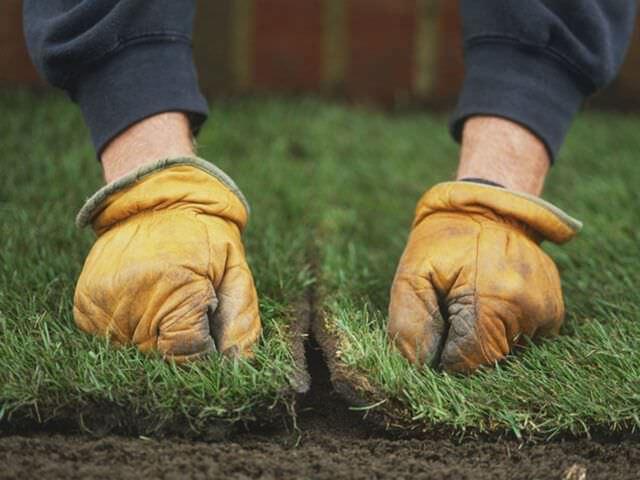 Как оформить лужайку перед домом