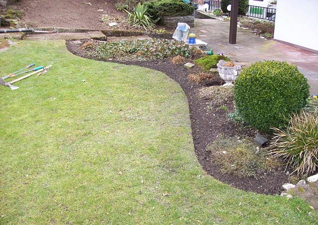 Газонная трава для песка